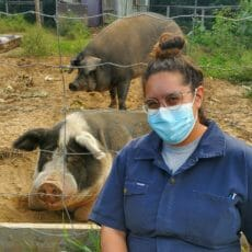 Dr. Pasmanter with two pigs