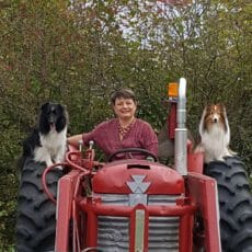 Registered veterinary technician sitting on a tractor with two dogs