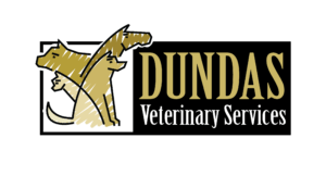 Logo of Dundas Veterinary Services in Winchester, Ontario